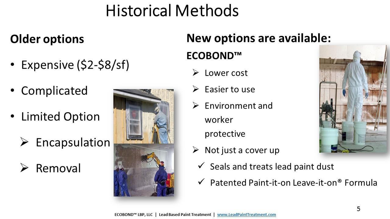 Lead paint removal cost